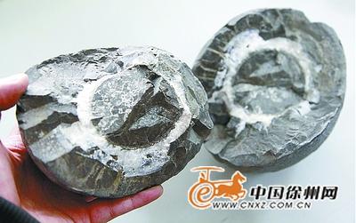 看了这块岩石和内部结构