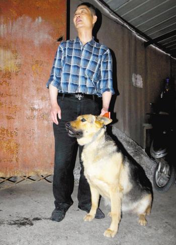 饲养动物 治安管理